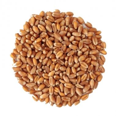 小麦进口业务